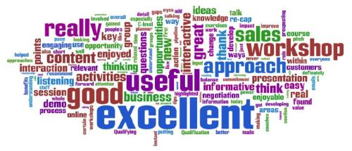wordle-view-of-workshop-feedback